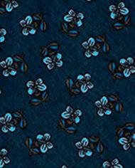 fascia-blu2d