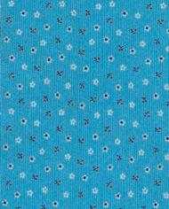 light-blu-2d